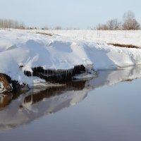 Отражение. :: Андрей Вычегодский