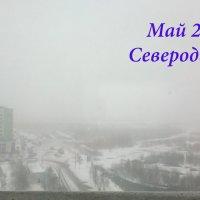 Погода сошла с ума.. :: Оксана Иваненская