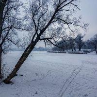 Летом здесь будет река :: Boris Belocerkovskij