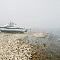Рыбалка в туман :: Наталья Покацкая