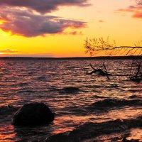 Пейзаж на закате :: Андрей Куприянов