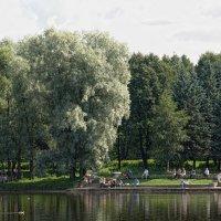 Парк :: Константин Воробьев