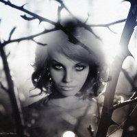 """""""Маленькая девочка со взглядом волчицы..."""" :: Мария Сендерова"""