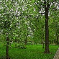Москва...Парк на Фрунзенской. :: Оксана Онохова