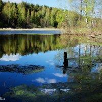 Невероятно тихие места... :: Anna Stroinova