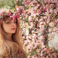 Весна :: Елена Ерошевич