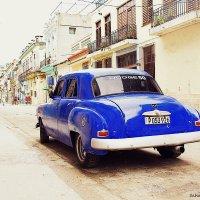 Blue car :: Arman S