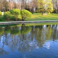 Сочные краски весны :: Наталья Рязанцева