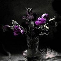 Тюльпаны :: Valdis Veinbergs