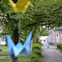 Журавлики на дереве :: Сергей Волков