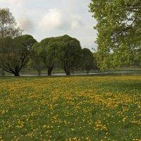 Парк Победы в Риге :: MVMarina