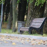 Скамейка в парке , начало осени :: Алексей Кузьмин