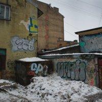 Сереньким зимним днем :: Цветков Виктор Васильевич