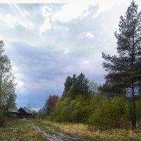 после грозы :: Наталья Ерёменко