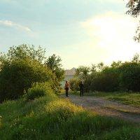 вечерняя прогулка :: василиса косовская