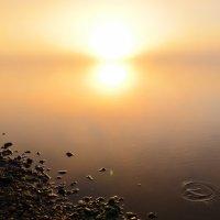 Река Вятка, восход солнца сквозь туман :: Татьяна Наймушина