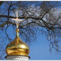 Купол часовни :: Александр Назаров