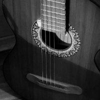 Гитара :: Ольга Гагаузова