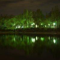 отражения. сказочный лес. :: Антонина Коквина