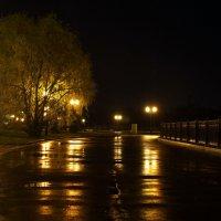 отражения. после дождя. :: Антонина Коквина