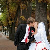 Берёза ,свадебная фотография :: Игорь Крупенин