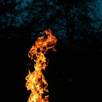 Пламя от костра :: Станислав Черноусиков