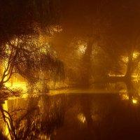 Пруд в тумане :: Олег Хатефов