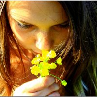 Цветочки :: Яна Токарева