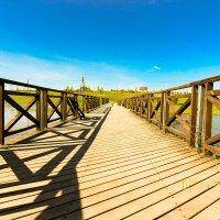 Выгнулся мосток из пяти досок.... :: kurator Popov