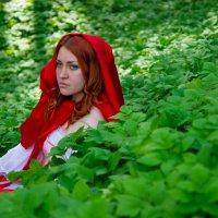 Красная шапочка :: ira