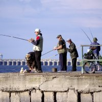 Рыбалка....и бабка :: Алексей Климов