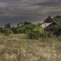 Забытый дом :: Анатолий Мигов