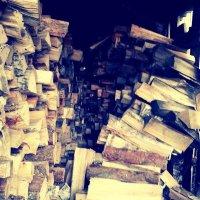 """в лес за дровами.."" :: Анастасия Тимофеева"