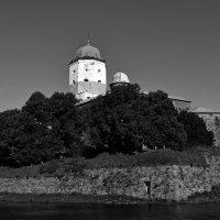 Вы́боргский за́мок :: сергей таня