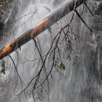 ...водопад... :: Ольга Нарышкова