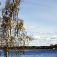 На озере :: Valerii Ivanov