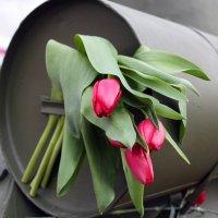 Цветы... :: Олег Огорельцев