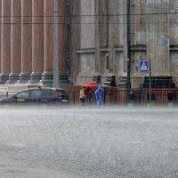 Бегущие под дождем :: Valeriy Piterskiy