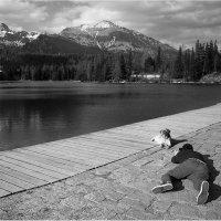Песофотосессия на фоне гор :: Виктория Иванова