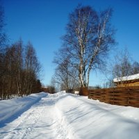 морозно... :: Марина Харченкова