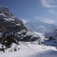 В горах мое сердце. :: svetlana