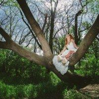 Невеста на дереве :: Николай Манвелов