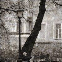 На скамеечке :: Станислав Лебединский