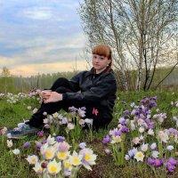 На цветочной поляне. :: Наталья Юрова