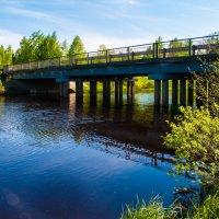 Река Колпь :: Дмитрий Янтарев