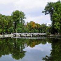 Тернополь :: Міша Купчак