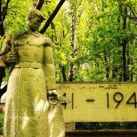 заброшенный памятник. :: Вадим Виловатый