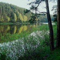 ВЕСНА  В  РАЗГАРЕ :: владимир осипов
