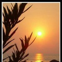 закат на море :: Евгений Фролов