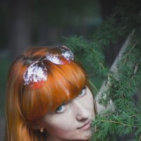 лес :: Александр Строченков